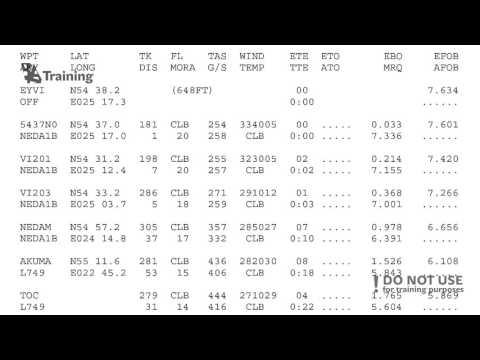 Flight Dispatcher: preparing the flight plan - BAA Training