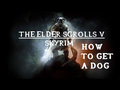 Skyrim - How To Get A Dog!