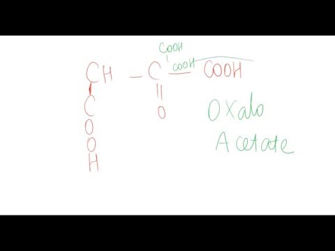 Mnemonic to remember amino acid structures
