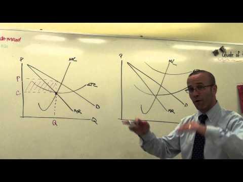 Monopoly: Profit Maximizing & Loss Minimization