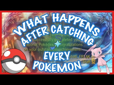 What Happens After Catching All Pokemon in ORAS