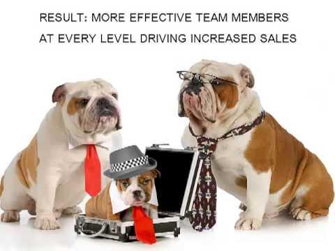 3 Doggone Simple Steps To Improve A Struggling Sales Team