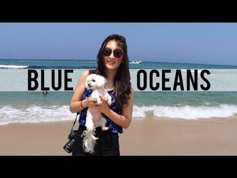 WV: BLUE OCEANS IN KOREA
