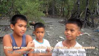 2013 Samar National School Docu-Kalikasan