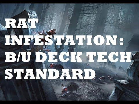 Rat Colony Standard Deck Tech