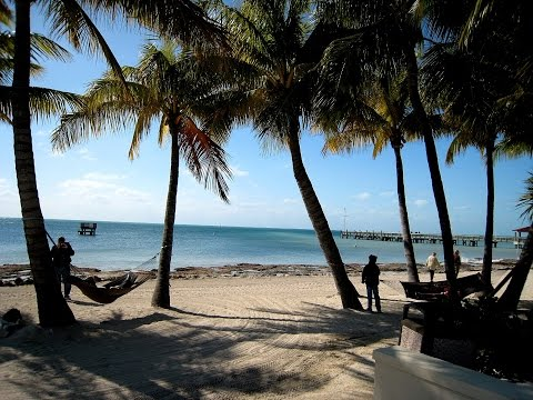Florida Sunshine, the Florida song by Smokey Daytona