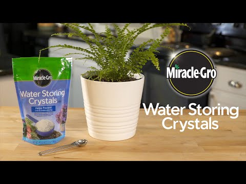 How to Use Miracle-Gro® Water Storing Crystals In Your Planting Containers