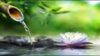 Relaxing Music For Body And Soul, Meditation, Stress Relief, Sleep, Yoga, Spa, Mind, Healing Therapy