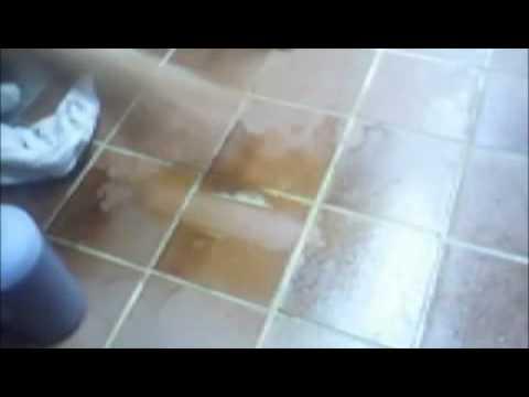 Extreme Clean Cer Tile Floor