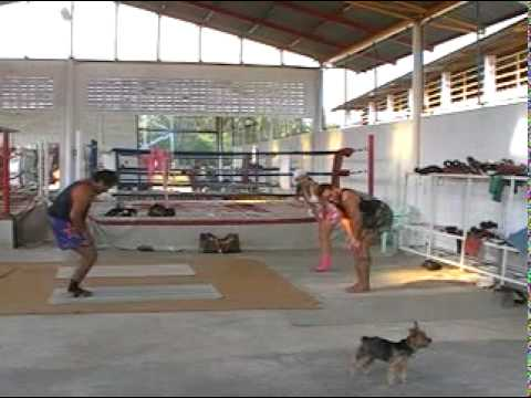 Workout to get in shape for Muay Thai - 1