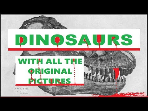 AUDIOBOOK - DINOSAURS (Including The Original Pictures)