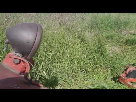 UTB Tractor cutting hay
