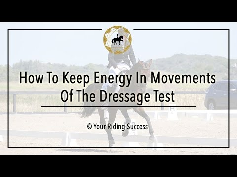 How To Keep Energy In Movements Of The Dressage Test - Dressage Mastery TV Ep158