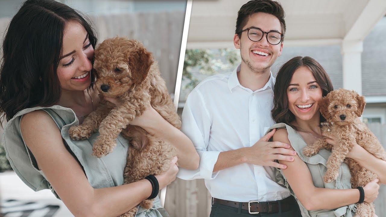 Bailey and Asa GET A DOG | Meet Jack Jack 🐶