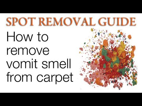 How to Remove Vomit Smell from Carpet | Spot Removal Guide