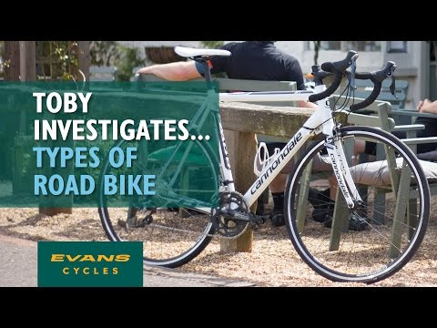 Different Types of Road Bike... Toby Investigates