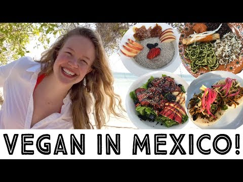 What I Ate As A Vegan in Mexico - Travel Vlog