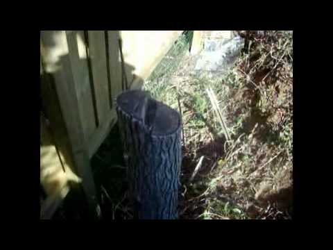 2010 Garden Diary #005: How to Cut Down a Tree Stump