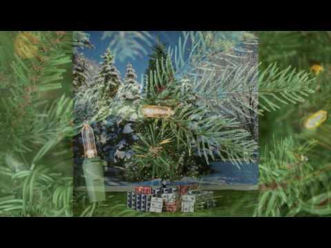 National Tree Tiffany Fir Pre lit, Slim