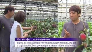 Tropical Fruit Farming