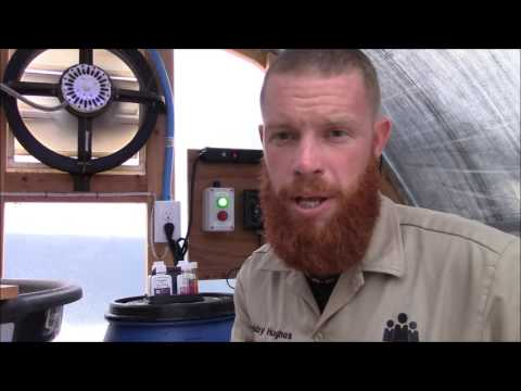 Urban Aquaponics - Maintaining Filters by HPFirearms