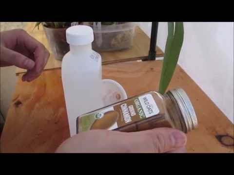 Alcohol & Cinnamon Fungicide for Orchids