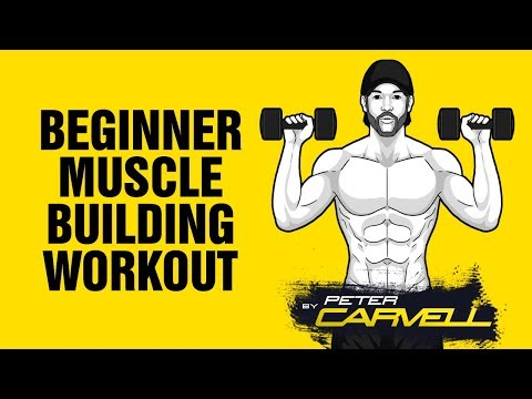 The Ultimate Beginner Home Muscle Building Workout - Build Muscle at Home - Sixpackfactory