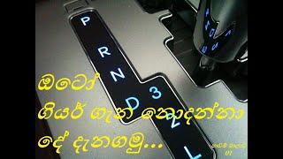 How to Start Driving Auto Gear Vehicle in Sinhala | ගියර් ගැන සිංහලෙන් ඉගෙනගමු |Ovelga DrivingSchool