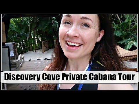 DISCOVERY COVE Private Cabana Tour! | One Take Vlog & Hello from Orlando!