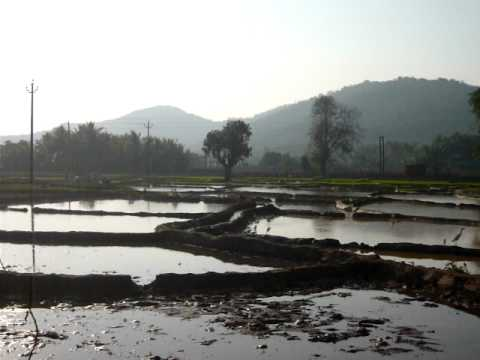 Preparing Rice Paddy Fields