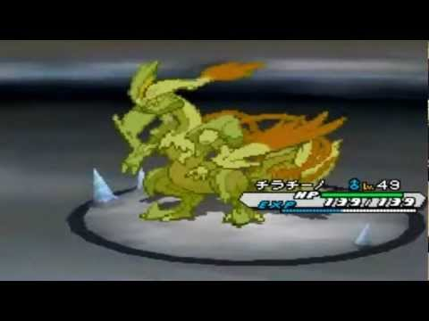 Pokémon White 2 - White Kyurem Battle