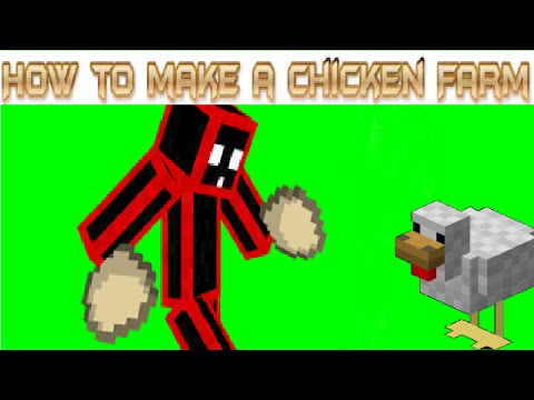 How To Make A Good Egg and Chicken Farm