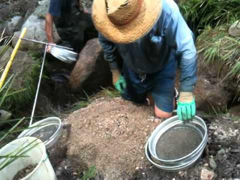 Rainy Swamp sapphire fossicking