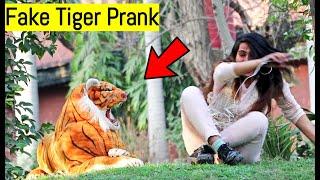 Fake Tiger Prank - Pranks in Pakistan - LahoriFied