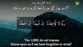 last 2 Ayats of Surah Baqarah, Beautiful Voice and Recitation (Repeated)