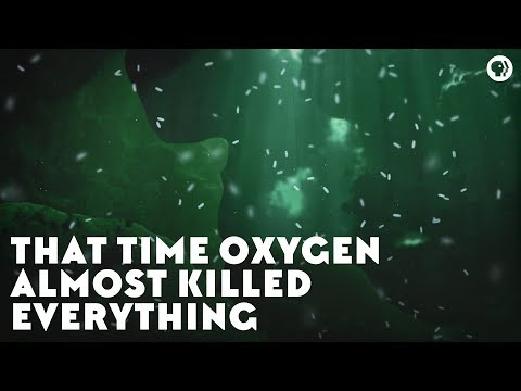 That Time Oxygen Almost Killed Everything