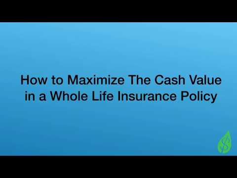 How to Maximize Cash Value in Whole Life Insurance