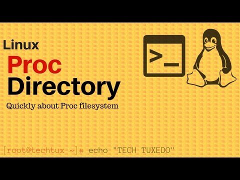 Proc Directory(proc filesystem)
