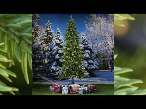 National Tree Avalon Spruce Pre lit, Slim