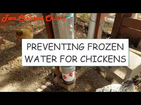 Preventing Frozen Water in Winter