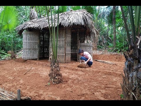 Primitive Technology: Make bamboo tents and create a yard - full video (Primitive-Hut)