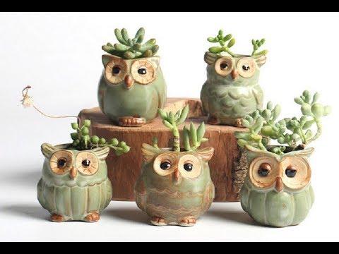 Cute Ceramic Owl Flower planters Set: Perfect Succulents Pots Idea