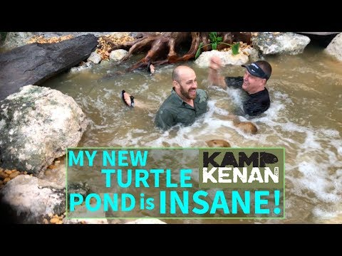 How to build a $14k Turtle Pond in 10 hours!
