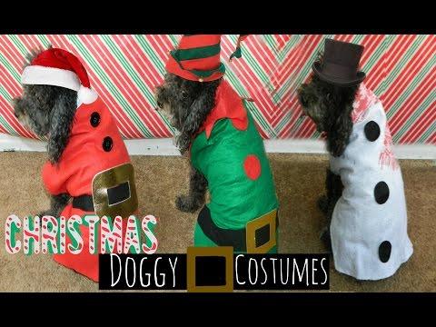 DIY| Easy $1 Xmas Doggy Costumes (No Sew)