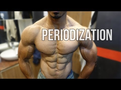 How To Avoid Muscle Building Plateau | Periodization for Bodybuilding