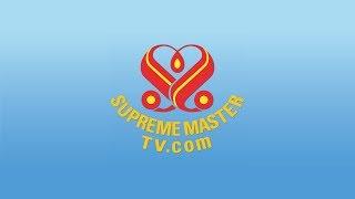 SupremeMasterTV Live