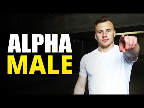 How to Be an ALPHA MALE | 4 Steps