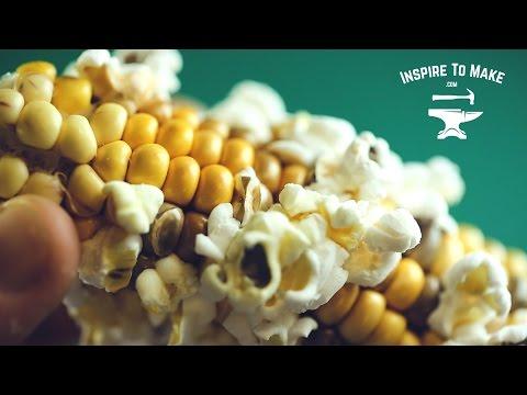 Simple Life Hack - Popcorn on the cob