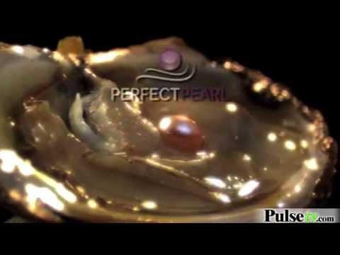 Perfect Pearl Kit