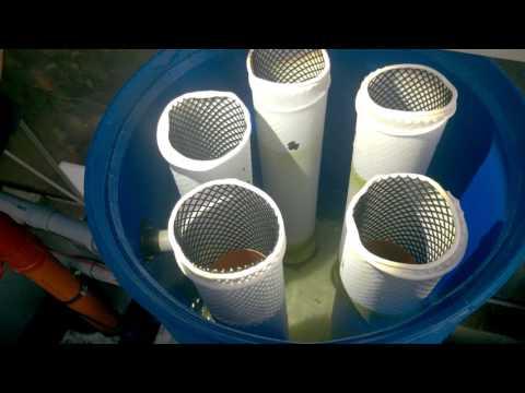 Brilliant DIY Filter - Koi Pond